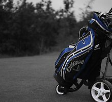 Callaway Golf Bag by Henry Bird