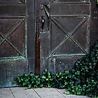 Ivy Door by Candy Gemmill