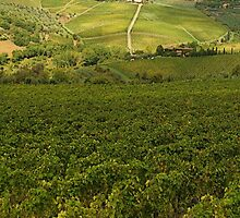 Panzano village in Chianti - Italy by gluca