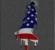 Bullet Hole and Flag Blood by TinaGraphics