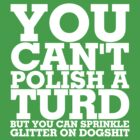 You can't polish a turd by Julian Holtom