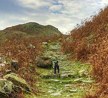 Tilberthwaite Tarn by Jamie  Green