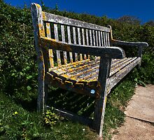 Bench by jamesdt