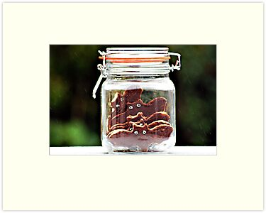 bats in a jar... by Gregoria  Gregoriou Crowe