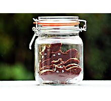 bats in a jar... Photographic Print