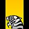 Tiger Emblem Yellow/Silver - (iPhone) by Adam Angold