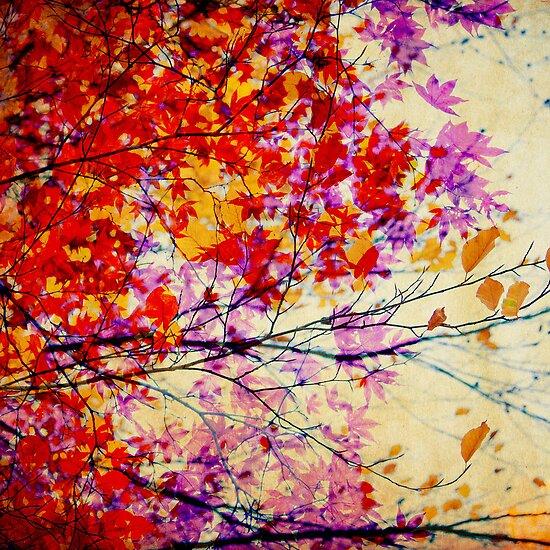 Autumn 1 by Mareike Böhmer