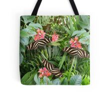 Zebra long wing butterfly trio Tote Bag