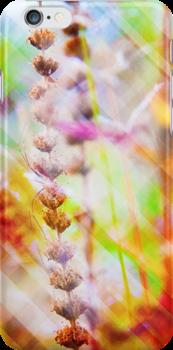 Abstract 1 by Mareike Böhmer