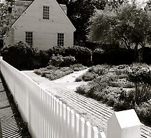 White Picket Fence by dimpdhab