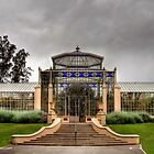 The Victorian Palm House by Christine Smith