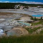 Norris Geyser Basin by Rob Atkinson