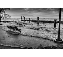 Watching Sandy down by the riverfront Photographic Print
