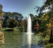 Palacio de Cristal Lake by Tom Gomez