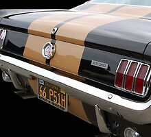 Hertz GT 350 by WildBillPho