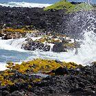 East Coast of the Big Island of Hawaii by Loisb