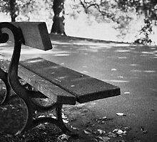 Lonley seat by Phillip Shannon
