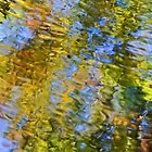 Dialect of Colors by HDTaylor