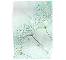 Baby Blue Sparkles Poster