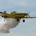 Water Bomber Air Tractor by Murray Wills