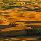 Palouse Shadow Play by Dan Mihai