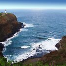 Relaxing Hawaii  by Chuck Coniglio