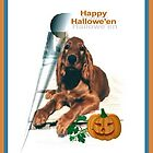 Happy Halloween by Barb Miller