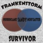 FRANKENSTORM SURVIVOR by Paul Gitto