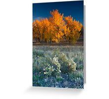 First Light Of Fall Greeting Card