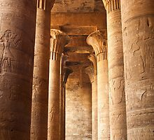 Edfu Temple by Sam Tabone