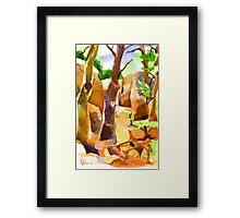 Pathway at Elephant Rocks Framed Print