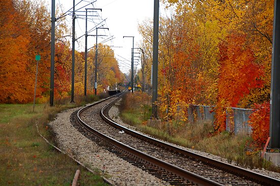 The Rails in Autumn by Joanne  Bradley