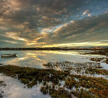 The Seagrass by manateevoyager