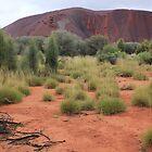 Damp Desert by Kymbo