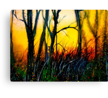 Cold Fire.. Canvas Print