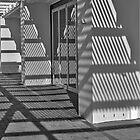 Shadows by awefaul