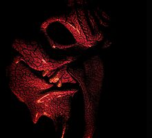El Diablo by shutterbug2010