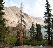 Lake Marie, WY (6077) by WDWillms