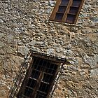 Windows at the Alamo by Rob Atkinson