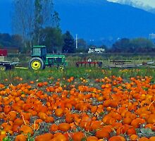 The Pumpkin Patch by l5evans