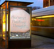 Harvest Positive Thoughts by MaryEllen O'Brien