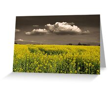 Before the Harvest Greeting Card