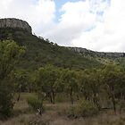 The Queensland Central Highlands by Saraswati-she
