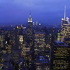 Lights of Manhattan by Mark Wilson