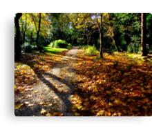 Autumn woodland path. Canvas Print