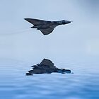 Vulcan Bomber Over Water by Paul Madden
