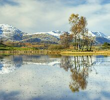 Wise Een....Autumn Snow by VoluntaryRanger