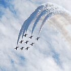Red Arrows Roll by jabisfab