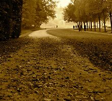Pathway | Chantilly, France by rubbish-art