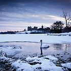 Linlithgow Loch by David Queenan